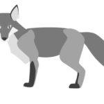 スラングとしての Silver foxの意味。典型的にはジョージ・クルーニーあたり?